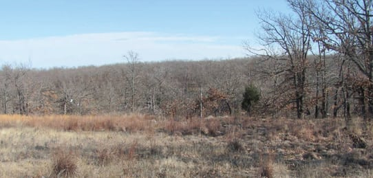 Warren Ranch- 670 Acres – Osage County