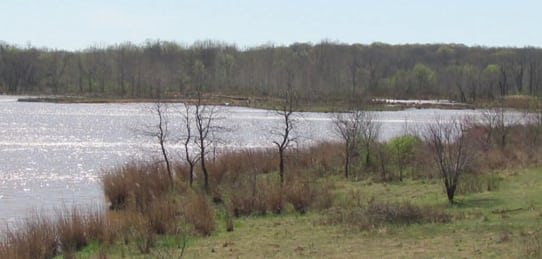 335 Acres- Timber Creek- Land for Sale Oklahoma (Sold)