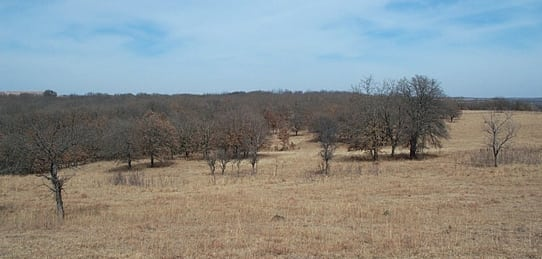 120 Acres- Hart Property