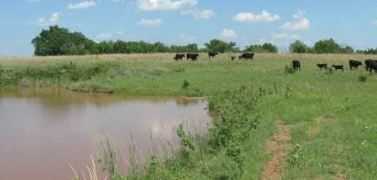 240 Acres- Homestead Springs- Farm Land for Sale in Oklahoma (SOLD)