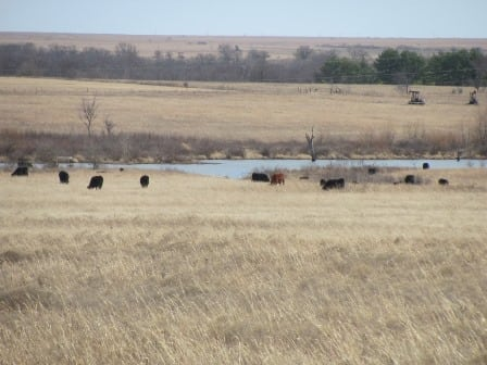 2700 Acres +/- Cross Creek Ranch- Washington County