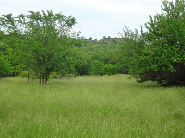 427 Total Acres Divided into 3 Tracts (120 Acres and 2-154 Acre Tracts)- Lagel Valley Ranch- Chautauqua County, KS