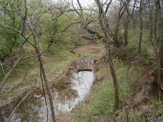 McCoy 320 Acres- Grant County, OK