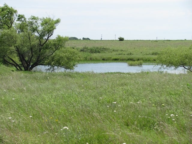 313 Acres- Shidler, OK (CONTRACTED)