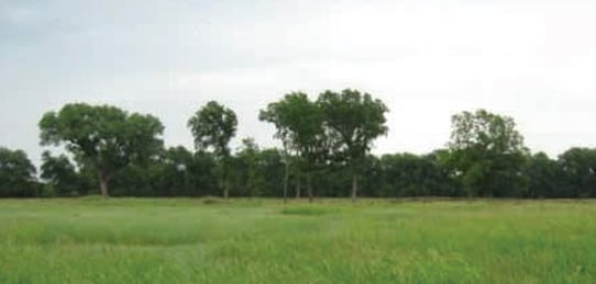 Mullins Farm and Ranch- Farm Land for Sale in Oklahoma (SOLD)