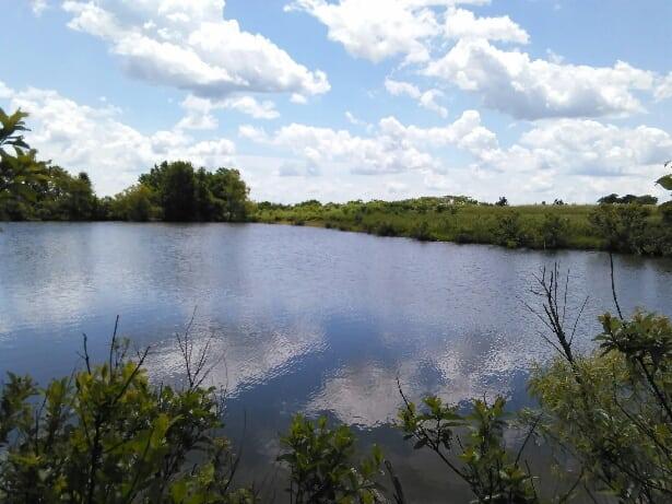 Elk County Hay Meadow- 193 Acres Elk County, KS