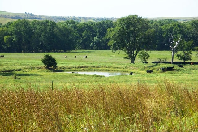 Circle M Ranch- 1233 Acres- Osage County, OK